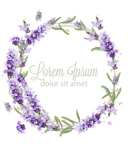 Lavender wreath card watercolor Vector. Flowers bouquet background. Spring delicate banner. Wedding invitation, Women day, birthday template Stock Vector