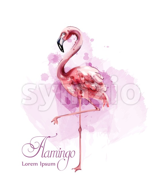 Flamingo in watercolor isolated Vector. Exotic bird cute poster template Stock Vector