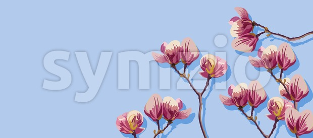 Magnolia flowers spring Vector. Beautiful card templates. Blue background Stock Vector