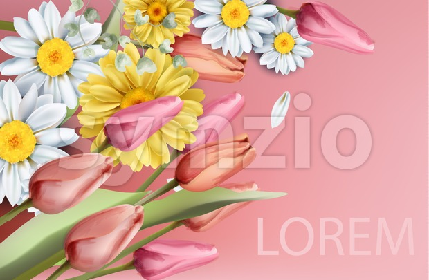 Daisy and tulips flowers bouquet Vector watercolor. Spring Summer trendy background