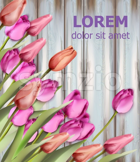 Tulips card Vector watercolor. Wooden texture background. Spring colorful floral bouquet Stock Vector