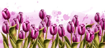 Pink tulips spring background Vector watercolor. Beautiful banner poster or invitation Stock Vector