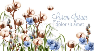 Cotton flowers background Vector watercolor. Spring season delicate frame. Template design card for wedding, birthday, mother day Stock Vector