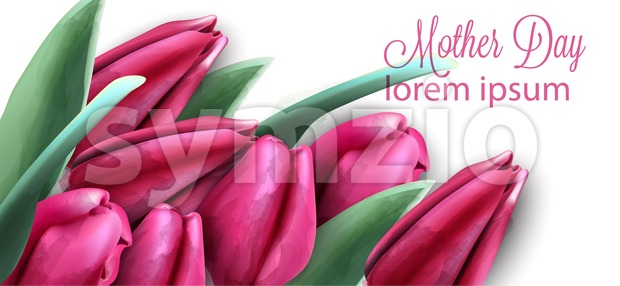 Pink tulip flowers banner Vector watercolor. Mother day card. Beautiful spring floral design Stock Vector