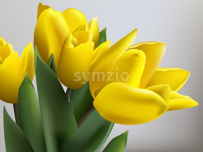 Yellow tulips spring card Vector. Beautiful natural bouquet Stock Vector