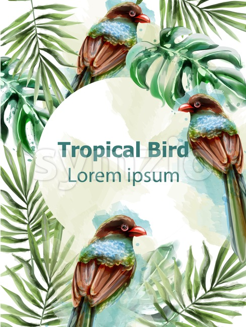 Colorful birds tropic card watercolor Vector with palm leaves decor. Exotic design summer layout