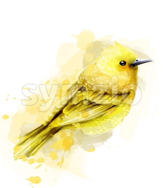 Cute yellow bird watercolor Vector isolated on white. Vintage design Stock Vector