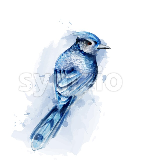 Cute blue bird watercolor Vector isolated on white. Vintage design Stock Vector
