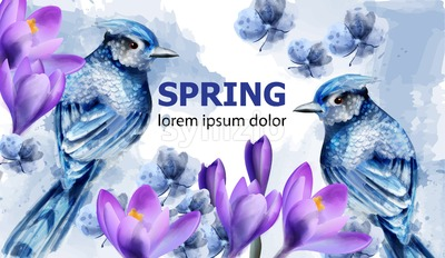 Spring card watercolor Vector with cute birds and flowers. Blue small birds. Magnolia flowers. Vintage Color stains splash on background Stock Vector