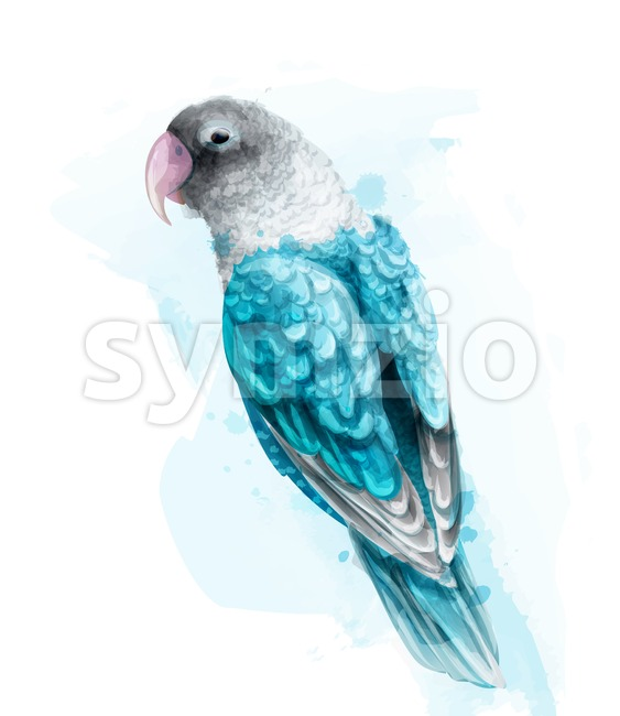 Tropic colorful parrot bird Vector watercolor. Cute bird illustration. blue colors splash