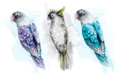 Colorful tropic parrot birds watercolor Vector. Beautiful exotic set collection Stock Vector