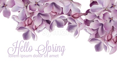 Hello spring background with purple lilac flowers Vector watercolor. Romantic floral wedding or greeting card decoration. Women day, Valentines Day, Stock Vector