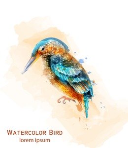 Kingfisher bird Vector watercolor. Colorful tropic bird isolated on white Stock Vector